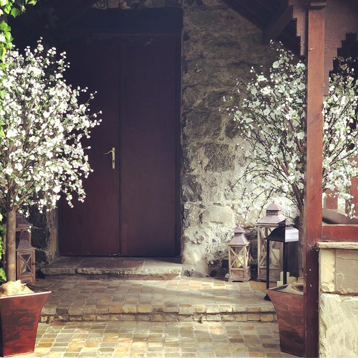 Say with a Blossom tree. Our gorgeous trees create a warm an...